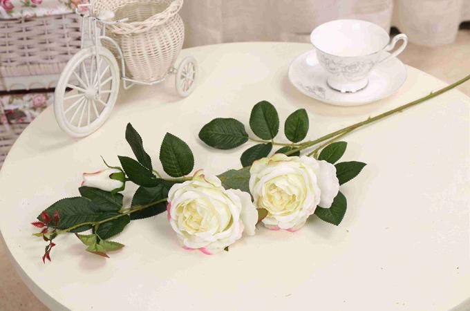 送女友香槟玫瑰好不好?有哪些意义吗?