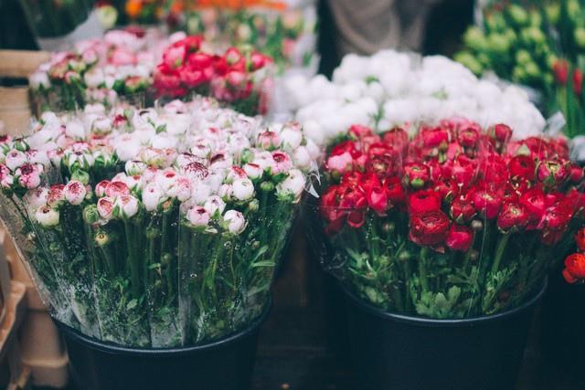 【恋爱花语】什么花代表恋爱?